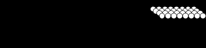 Mizellen, Liposome