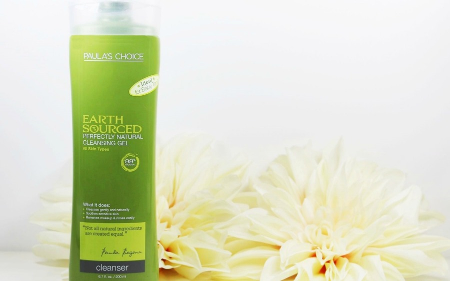 Naturkosmetik ohne Alkohol, Naturkosmetik ohne Duftstoffe, Naturkosmetik ohne ätherische Öle, Reinigung Gesicht, Reinigung Akne, Veganes Duschgel, Earth Sourced Waschgel, Paula's Choice Earth Sourced Waschgel, Paula's Choice Earth Sourced Perfectly Natural Cleansing Gel, Paula's Choice Earth Sourced Cleanser, Super Twins Annalena und Magdalena