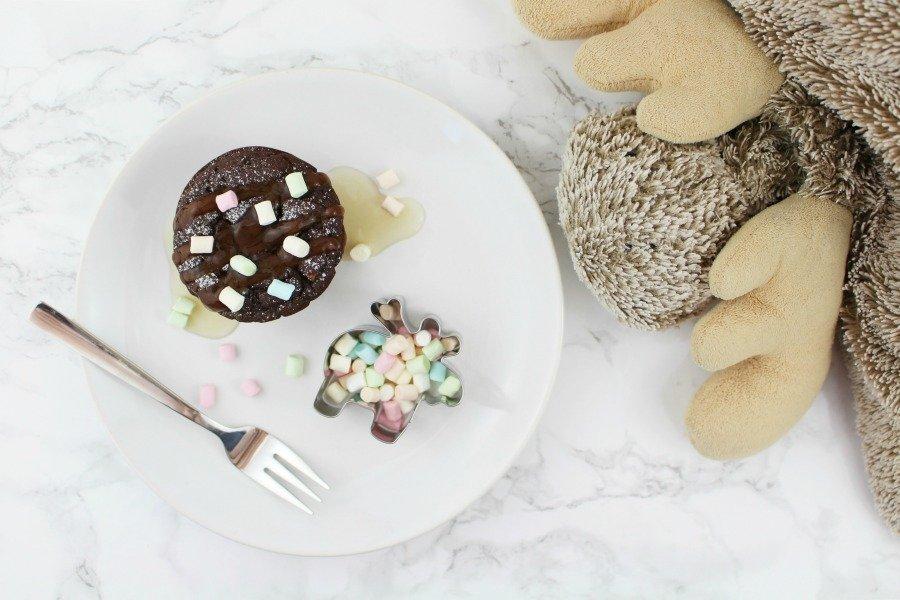Low Carb Protein Schoko Muffins, Super Twins Annalena und Magdalena