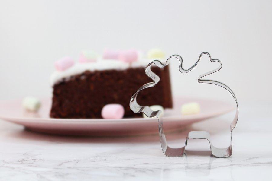 Schoko Rüblikuchen, saftiger Möhrenkuchen mit Schokolade, Low Carb Karottenkuchen ohne Mehl und Zucker, saftiger Karottenkuchen Schoko, Super Twins Annalena und Magdalena